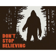 Tin sign Don't Stop Believing TSN2195