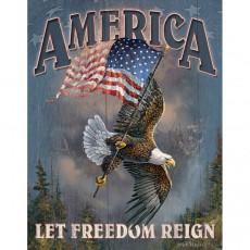 Blechschild Let Freedom Reign TSN1668