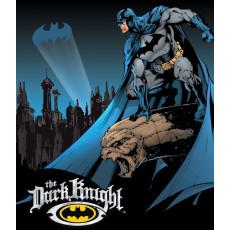 Tina kyltti Batman The Dark Knight TSN1356