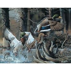 Cartel de chapa Ducks Unlimited TSN1204