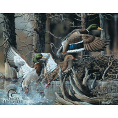 Жестяная табличка Ducks Unlimited TSN1204