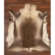 Reindeer Hide Pokka Standart Quality Large SQ205WL