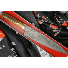 Japanilainen kokkiveitsi Gyuto Takeshi Saji VG10, bull bone HA4608 21cm